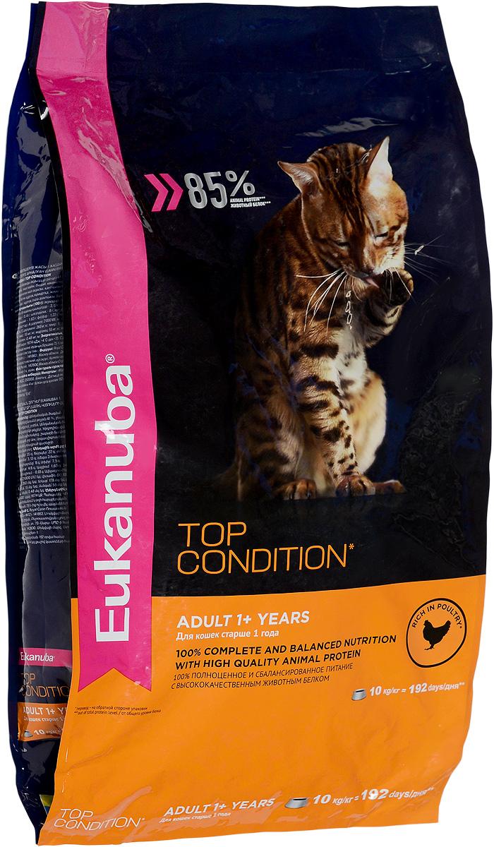 Корм сухой Eukanuba EUK Cat для взрослых кошек, с домашней птицей, 10 кг демирчоглян г г компьютер и здоровье
