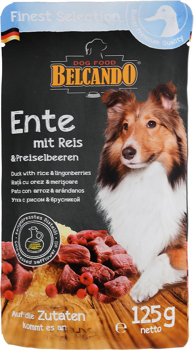 Консервы для собак Belcando, с уткой, рисом и брусникой, 125 г. 43352 консервы для собак belcando с отборным мясом 800 г