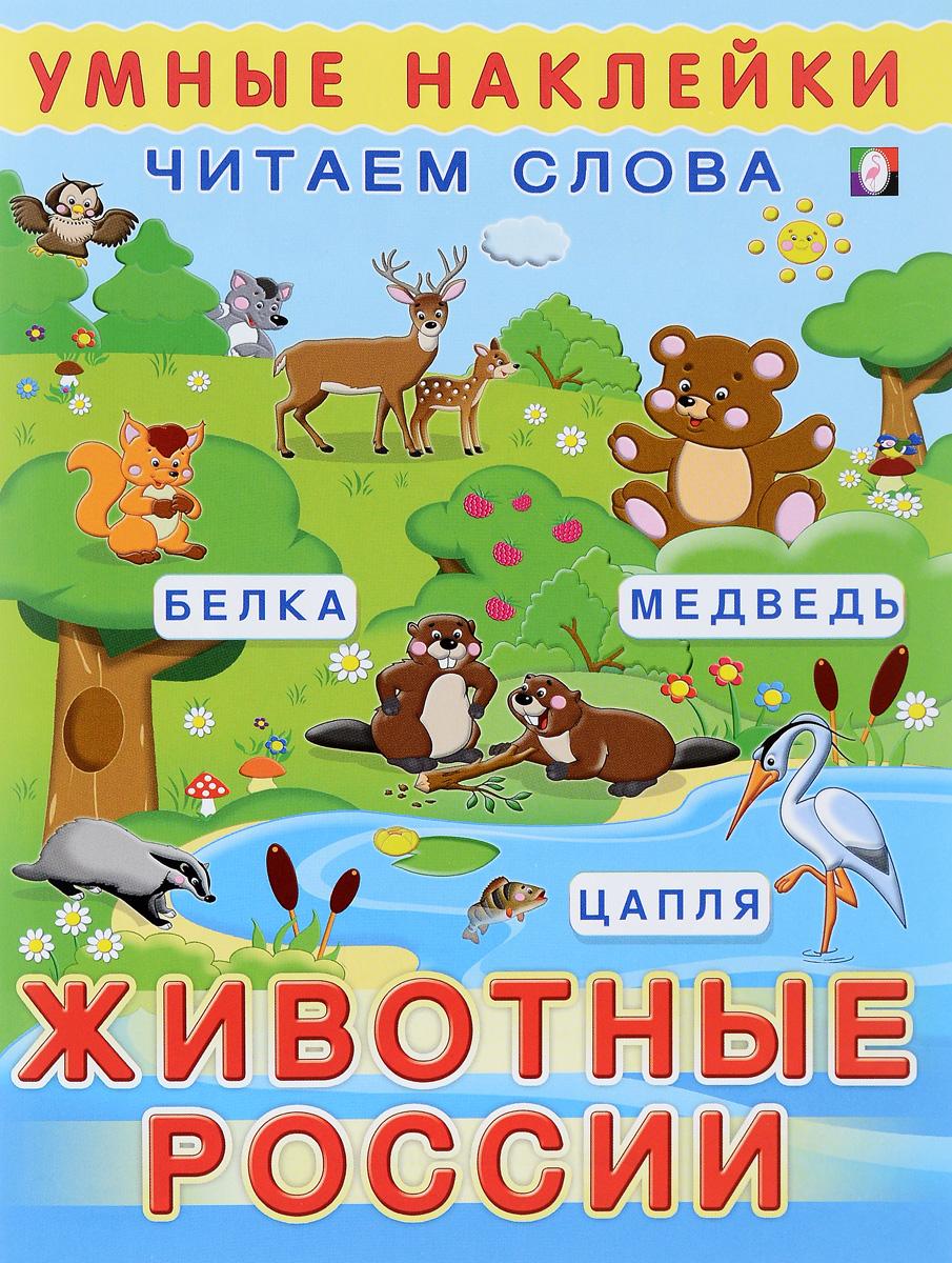 Животные России животные россии