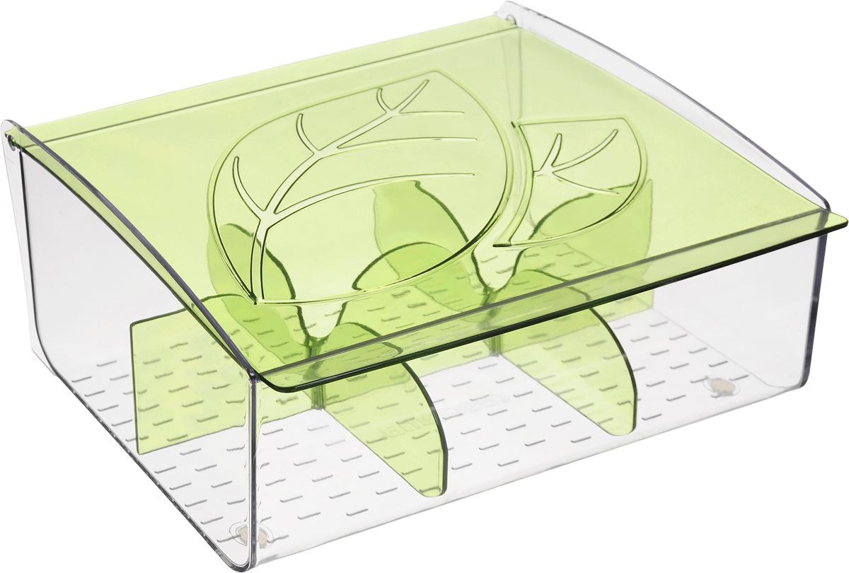 Коробка для чайных пакетиков Tescoma Mydrink, цвет: зеленый, прозрачный, 21,8 х 16,5 х 9,3 см berlingo бумага для заметок c клеевым краем 7 6 х 7 6 см цвет зеленый 100 листов