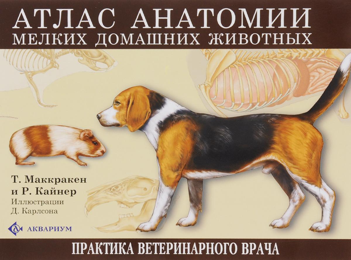 Т. Маккракен и Р. Кайнер Атлас анатомии мелких домашних животных