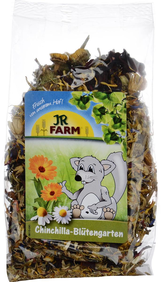 Лакомство для шиншилл JR Farm
