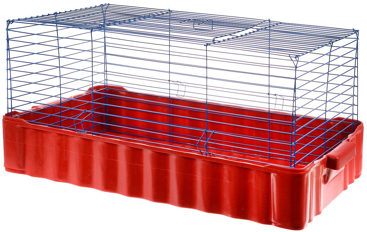 Клетка для кролика ЗооМарк, цвет: красный поддон, синяя решетка, 75 х 46 х 40 см клетка для шиншилл и хорьков зоомарк цвет синий поддон синяя решетка 59 х 41 х 79 см 725дк
