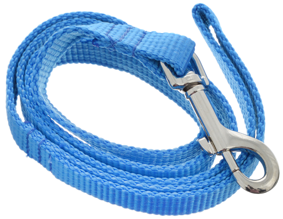"Поводок капроновый для собак ""Аркон"", цвет: синий, ширина 2 см, длина 1 м"