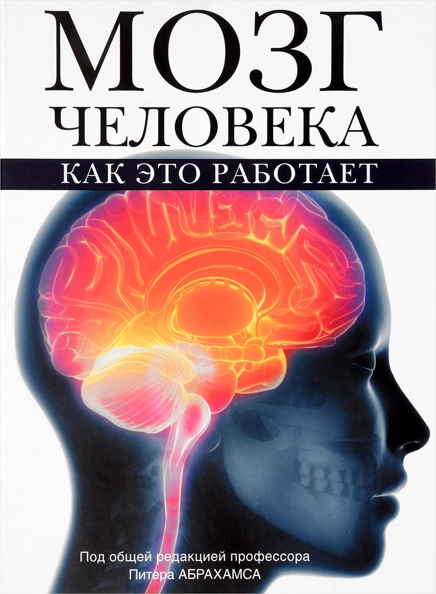 Питер Абрахамс Мозг человека. Как это работает
