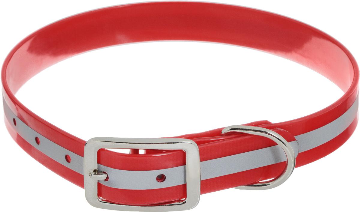 Ошейник для собак Каскад Синтетик, со светоотражающей полосой, цвет: красный, ширина 2,5 см, обхват шеи 44-56,5 см ошейник для собак каскад с косынкой цвет красный ширина 10 мм обхват шеи 22 35 см