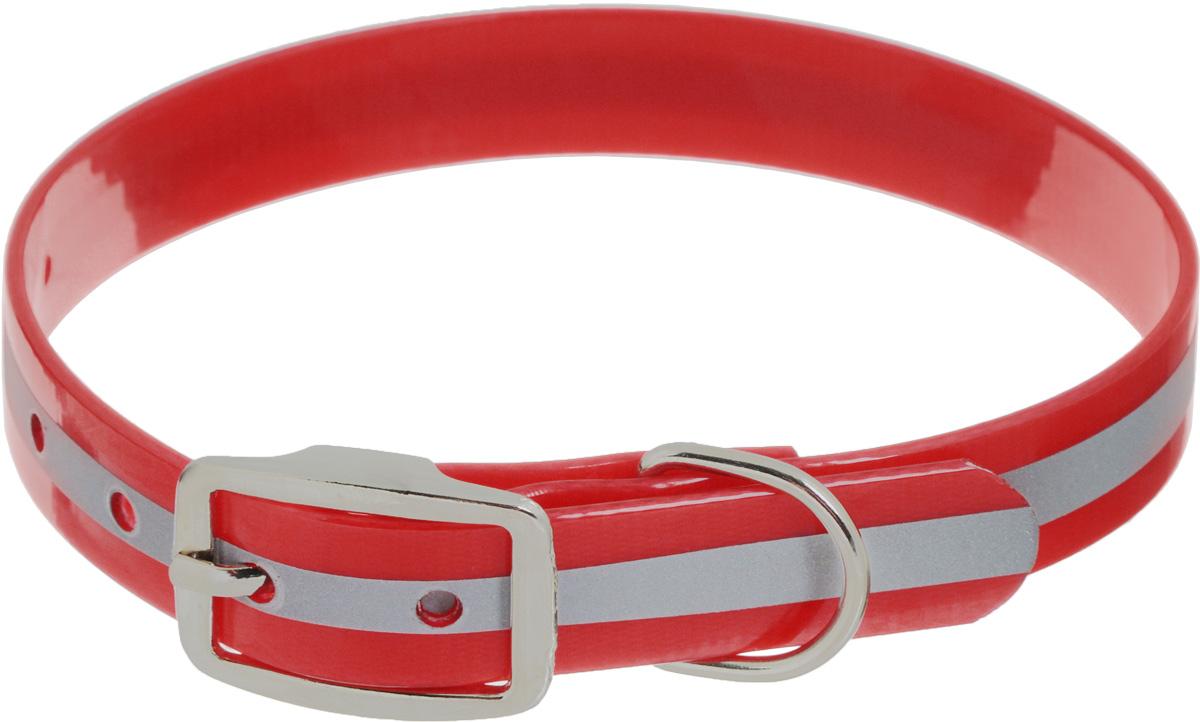 Ошейник для собак Каскад Синтетик, со светоотражающей полосой, цвет: красный, ширина 2,5 см, обхват шеи 39-51,5 см ошейник для собак каскад классика брезентовый ширина 2 см обхват шеи 31 39 см