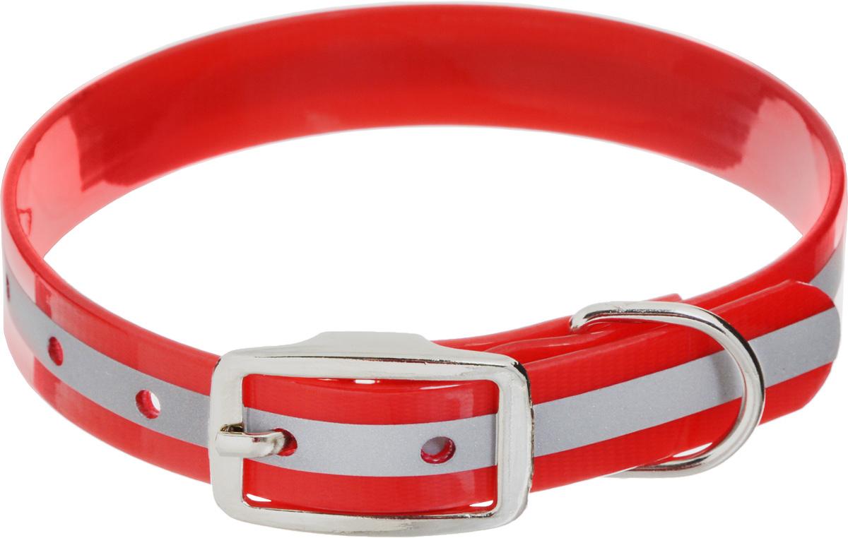 Ошейник для собак Каскад Синтетик, со светоотражающей полосой, цвет: красный, ширина 2 см, обхват шеи 25-35 см ошейник для собак каскад с косынкой цвет красный ширина 10 мм обхват шеи 22 35 см
