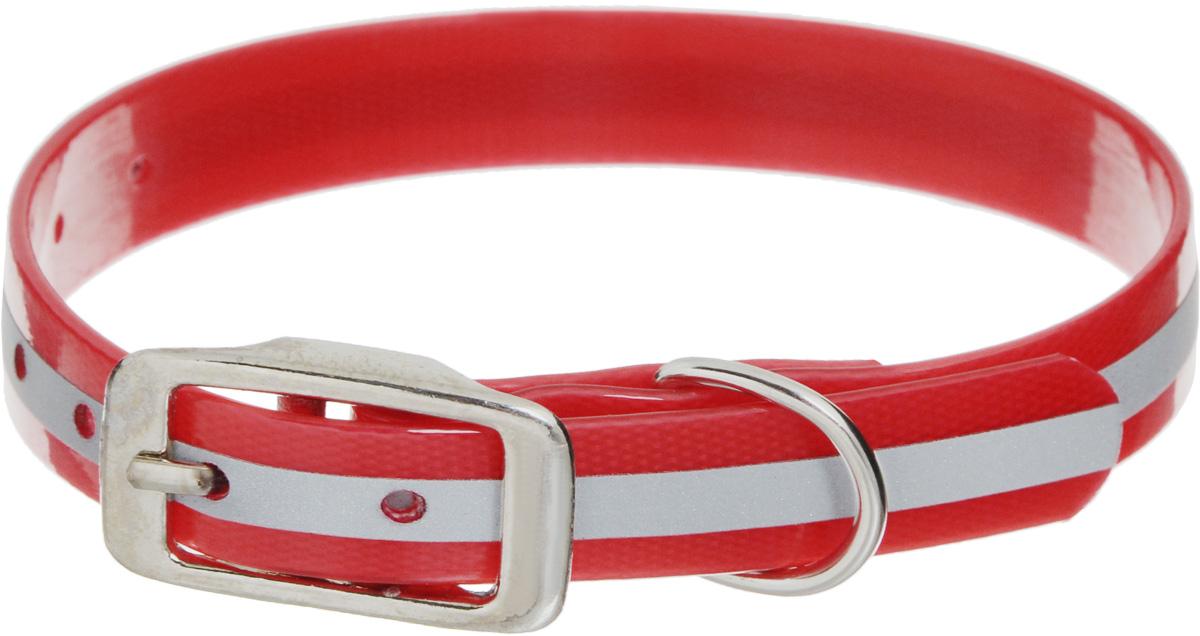 Ошейник для собак Каскад Синтетик, со светоотражающей полосой, цвет: красный, ширина 1,5 см, обхват шеи 26-35 см ошейник для собак каскад с косынкой цвет красный ширина 10 мм обхват шеи 22 35 см