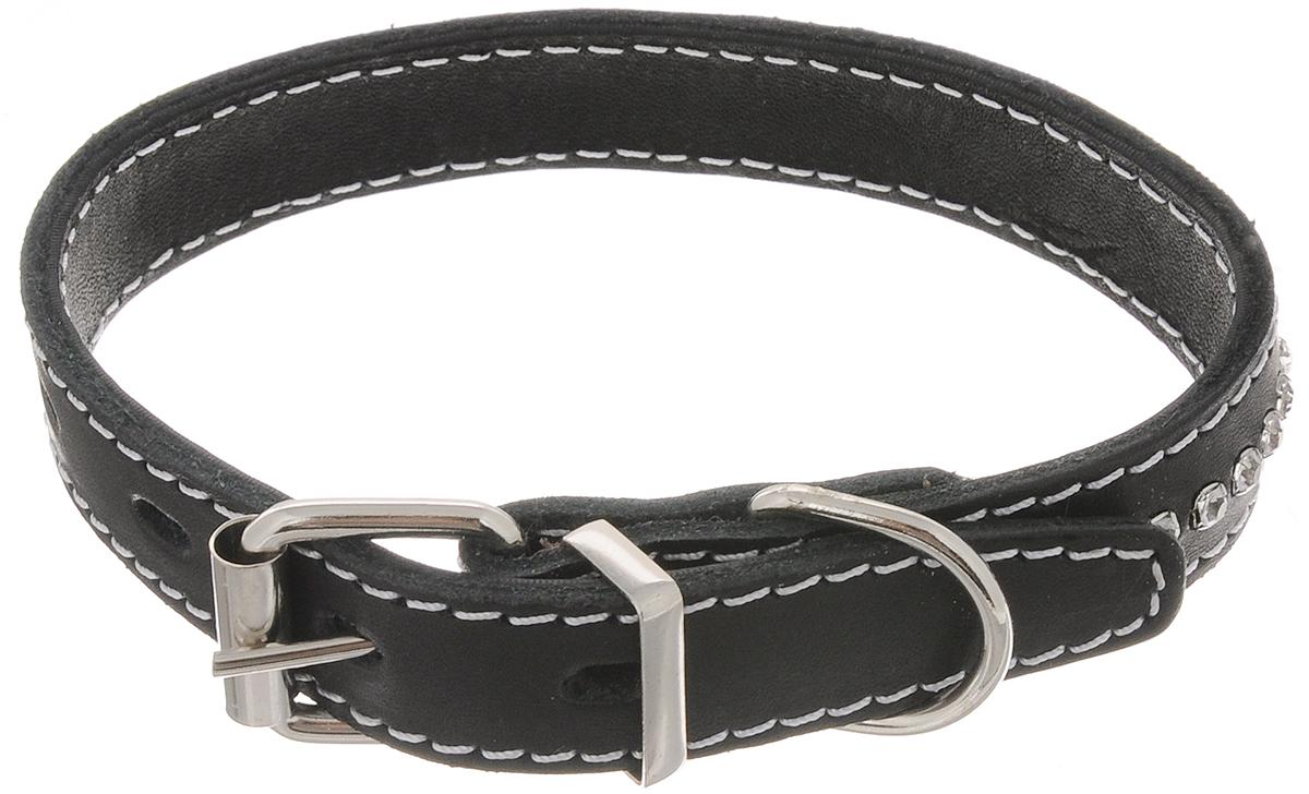 Ошейник для собак Каскад Классика, двойной, цвет: черный, ширина 2 см, обхват шеи 27-35 см. 00020020ч ошейник для собак каскад классика брезентовый ширина 2 см обхват шеи 31 39 см