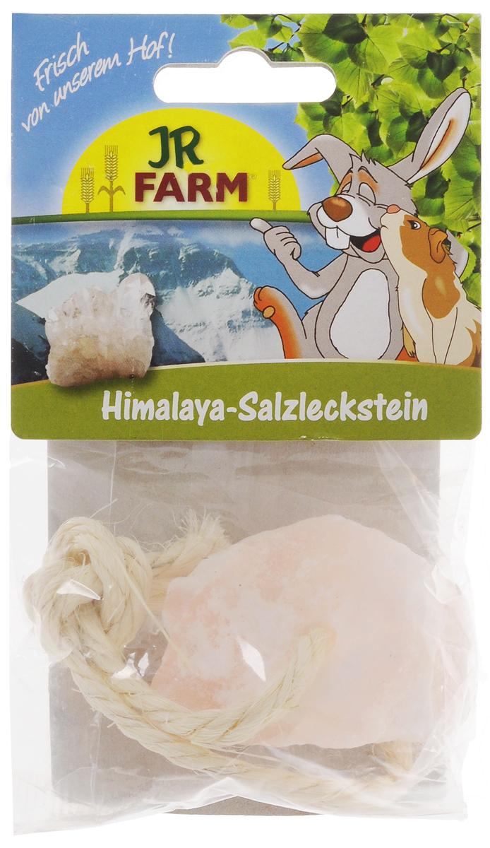 Лакомство для грызунов JR Farm Соль-лизунец, 80 г соль гималайская черная пищевая 200гр
