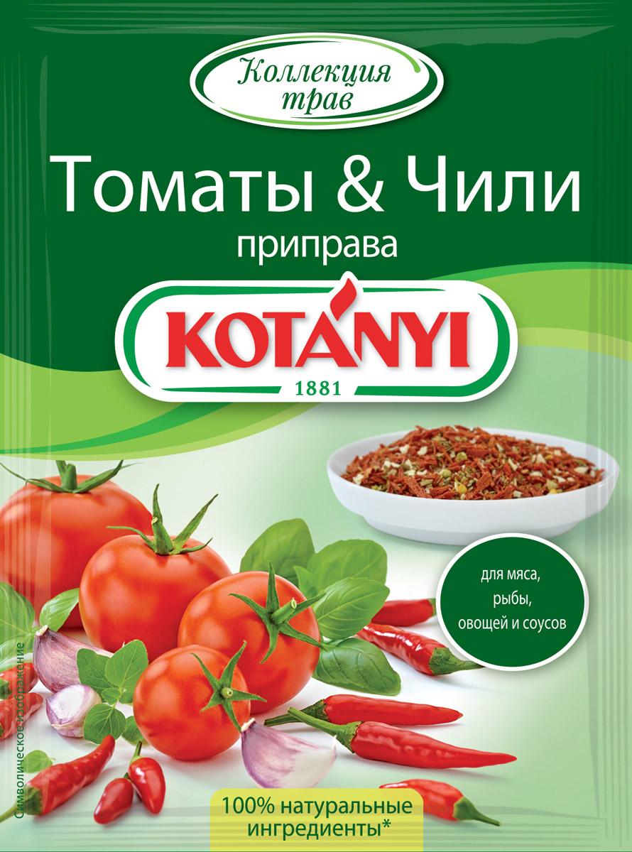 Помидоры с кетчупом чили на зиму: рецепты консервации в домашних условиях