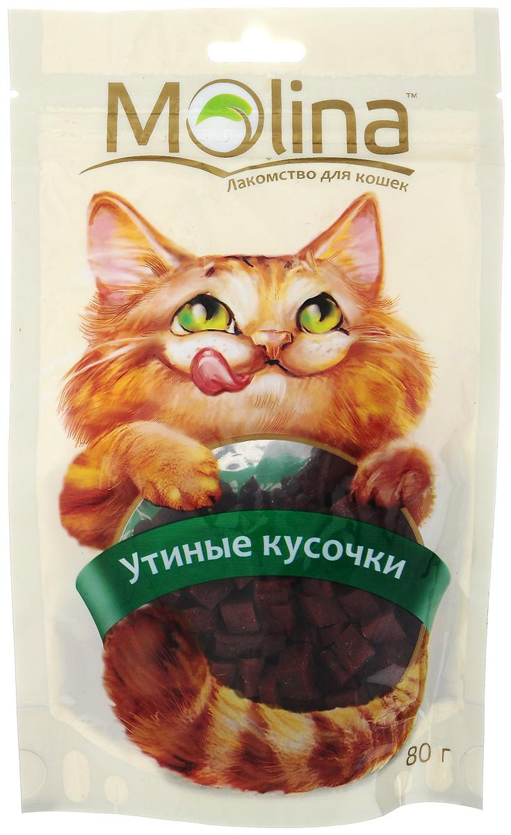 Лакомство для кошек Molina Утиные кусочки, 80 г molina molina лакомство для собак мелких пород медальоны из ягненка 50 г