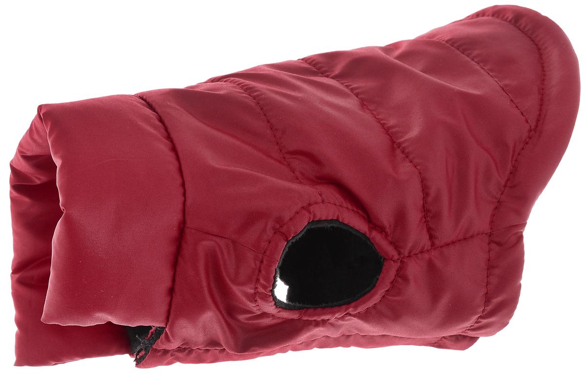 """Куртка для собак """"Алькор"""", унисекс, цвет: красный. Размер XS"""
