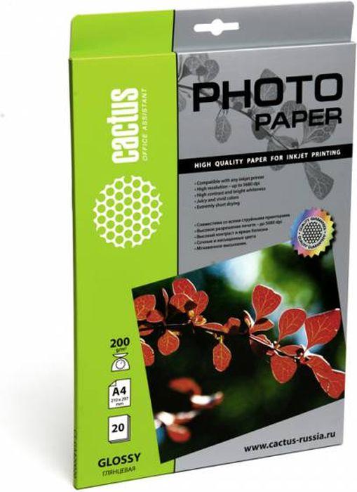 Cactus CS-GA420020 A4/200г/м2 глянцевая фотобумага для струйной печати (20 листов) цена
