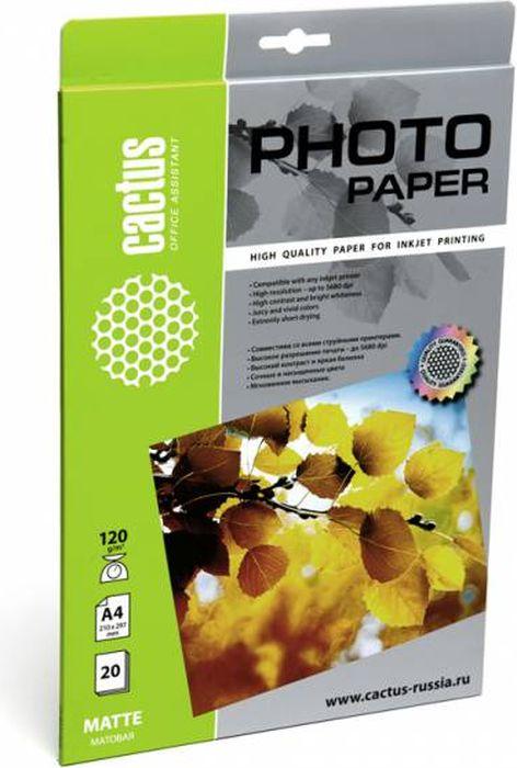 Cactus CS-MA412020 A4/120г/м2 матовая фотобумага для струйной печати (20 листов) цена