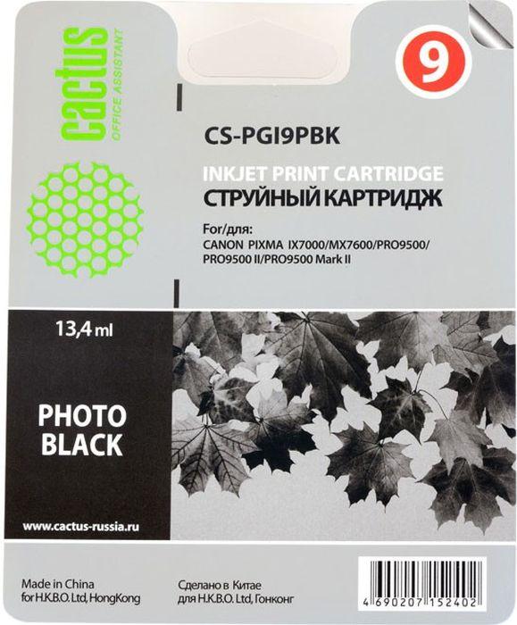 Картридж Cactus CS-PGI9PBK, черный, для струйного принтера