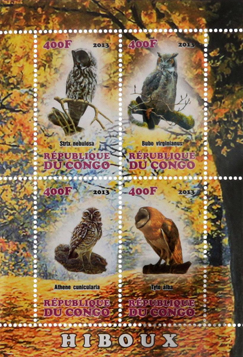 Почтовый блок в 4 марки Совы. Конго, 2013 год почтовый блок в 4 марки дикие африканские звери лев слон носорог ягуар джибути 2013 год