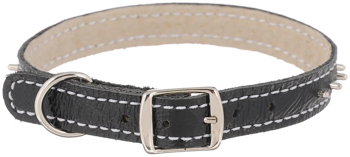 Ошейник для собак Каскад Классика, двойной, с шипами, цвет: черный, ширина 1,2 см, обхват шеи 20-24 см ошейник для собак каскад классика брезентовый ширина 2 см обхват шеи 31 39 см