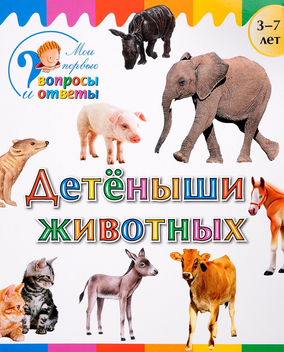 А. А. Орехов Детеныши животных