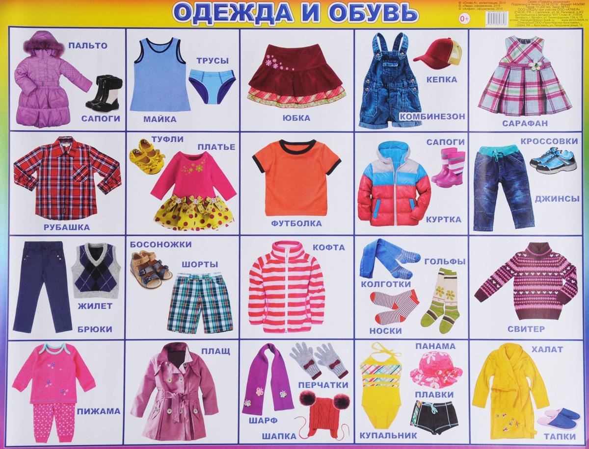 9dcbc6ce0c2 Алфея Обучающая игра Одежда и обувь — купить в интернет-магазине OZON.ru с быстрой  доставкой