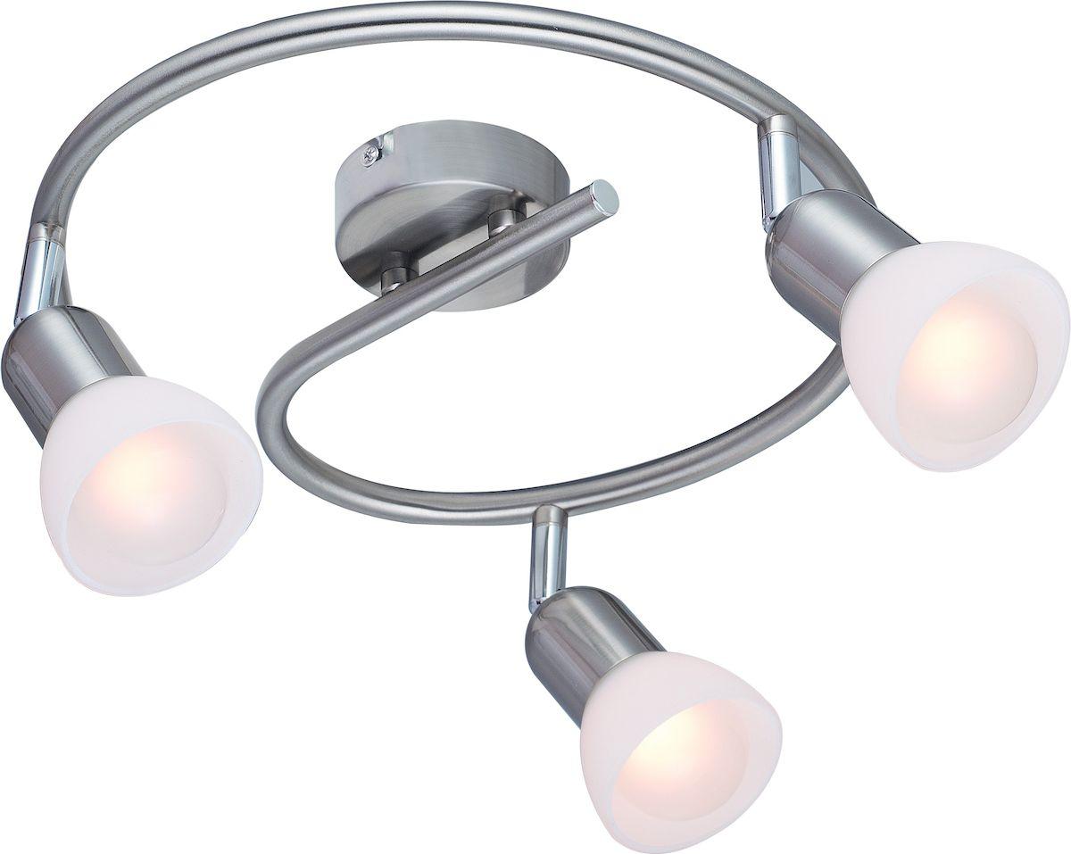 Светильник потолочный Arte Lamp Falena. A3115PL-3SS цена