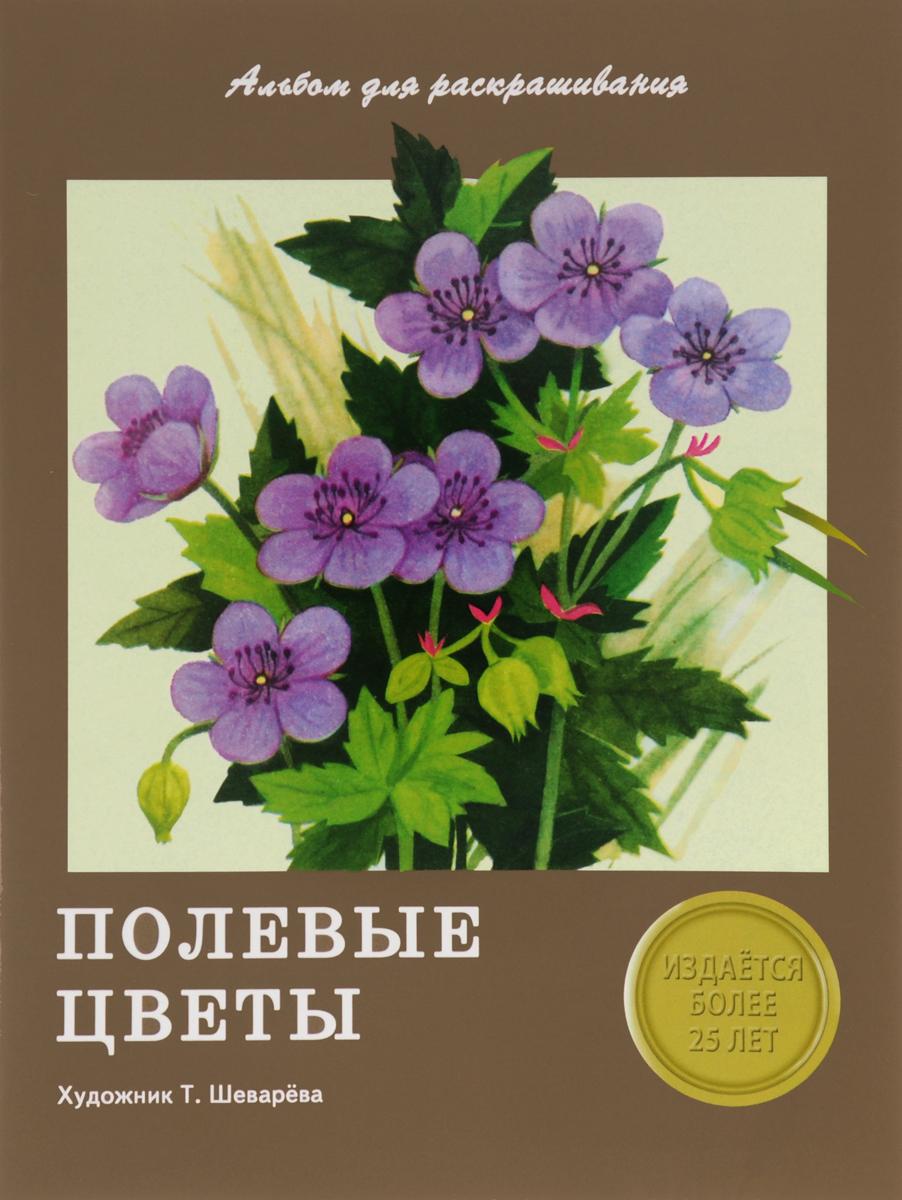 Н. Терентьева Полевые цветы. Альбом для раскрашивания