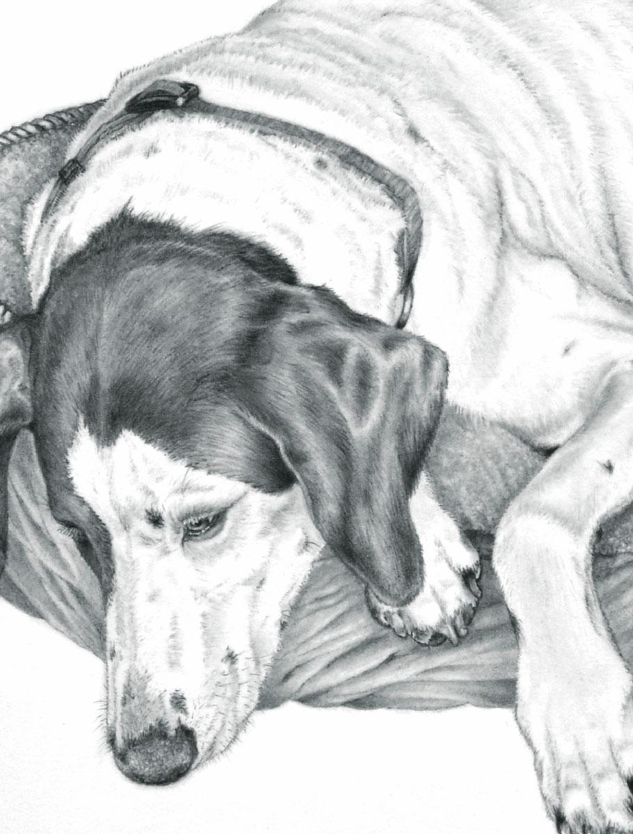 Попурри Записная книжка Собака 80 листов в клетку/линейку записная книжка на замочке моей любимой подружке 50 листов в линейку