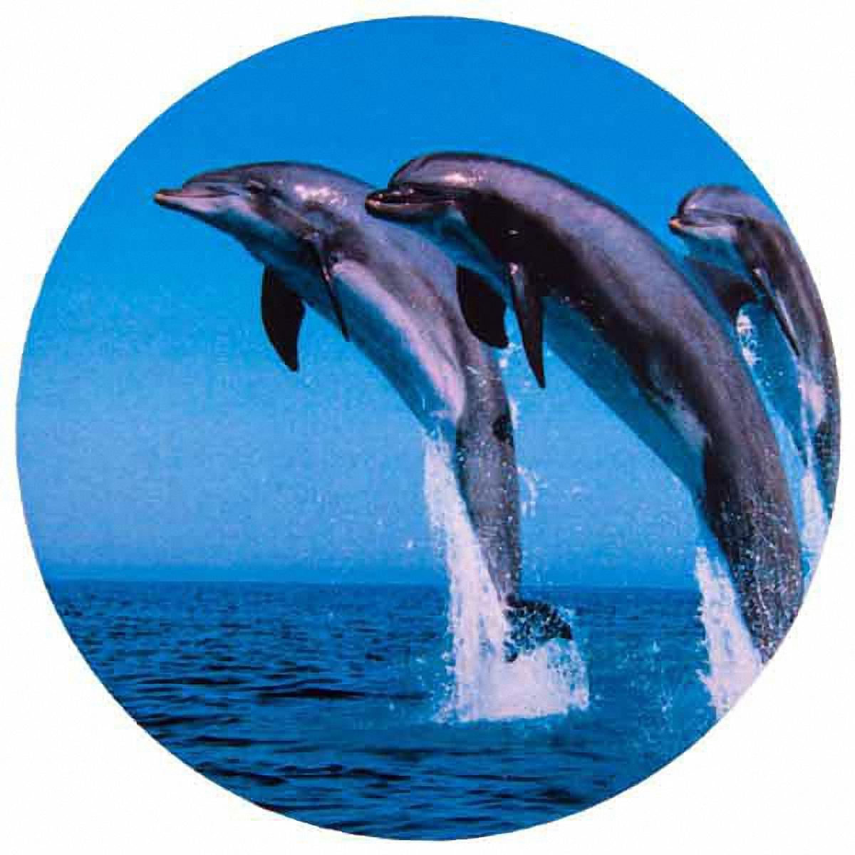 Чехол на запасное колесо Skyway, цвет: синий чехол skyway s06301007