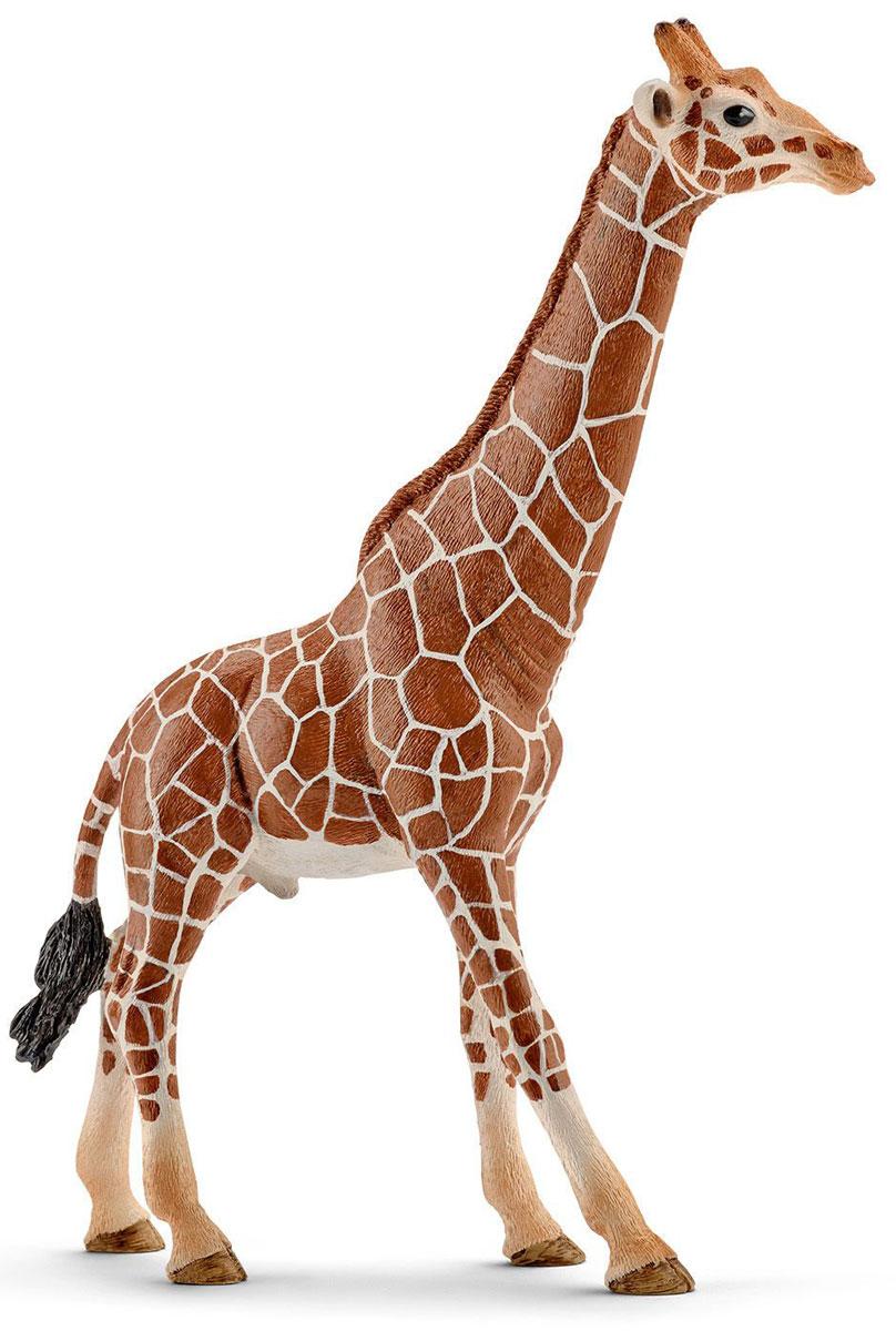 Schleich Фигурка Жираф самец schleich мандрил самец