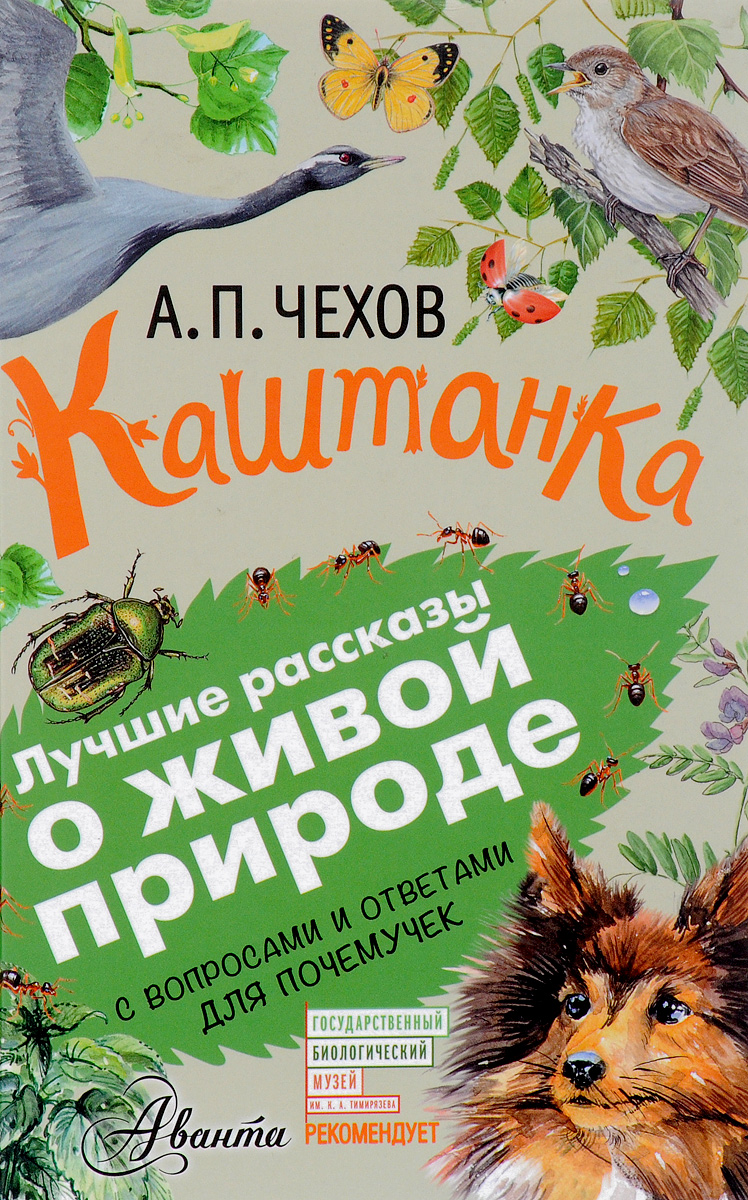 А. П. Чехов Каштанка. С вопросами и ответами для почемучек