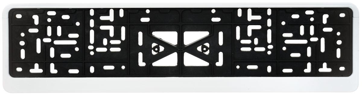 Рамка под номер Skyway, с защелкой, 53 х 13,5 х 1,3 см рамка под номер skyway цвет серо белый