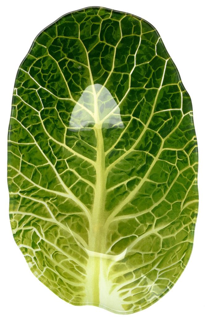 Салатник Walmer Leaf Lettuce, 15,6 х 25,7 х 4 см блюдо walmer lettuce 18 x 21 см