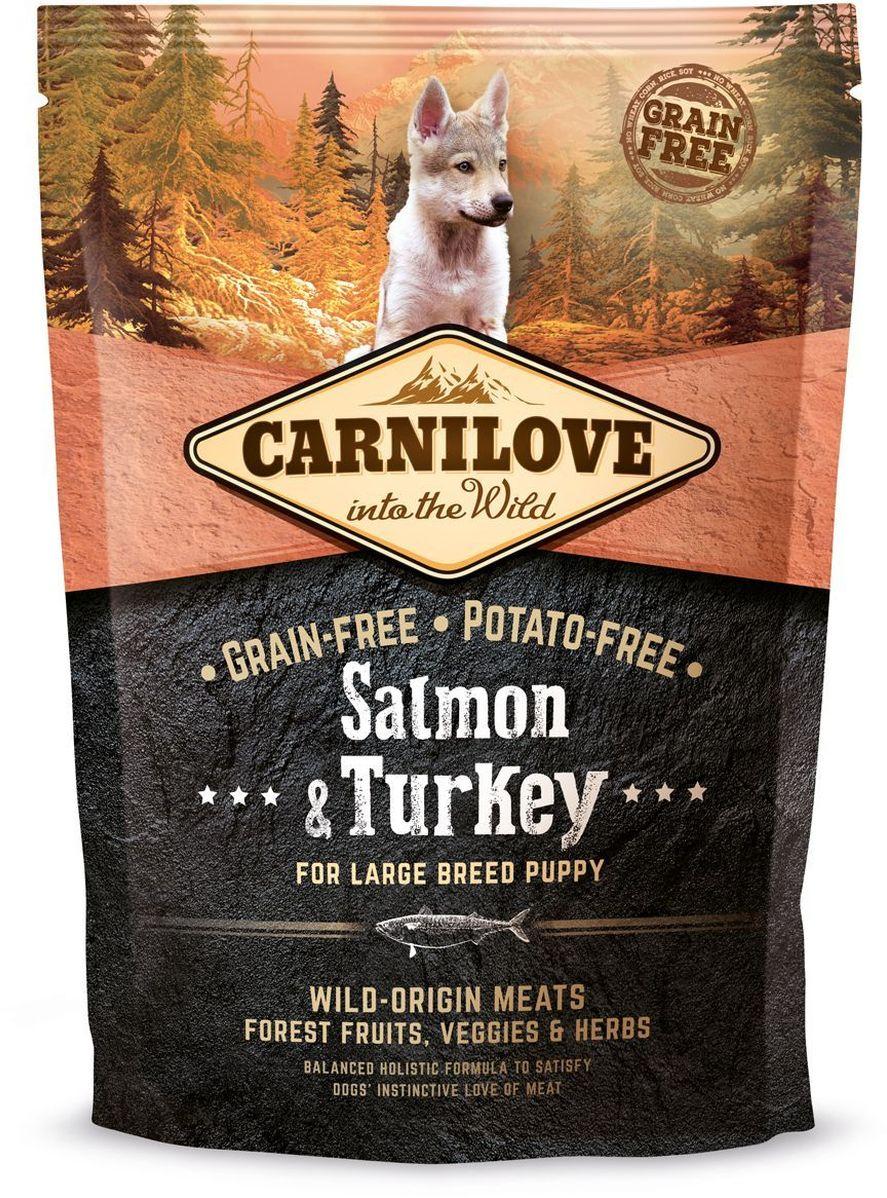 Корм сухой Carnilove, для щенков крупных пород, беззерновой, с лососем и индейкой, 1,5 кг falcon eye fe l280w