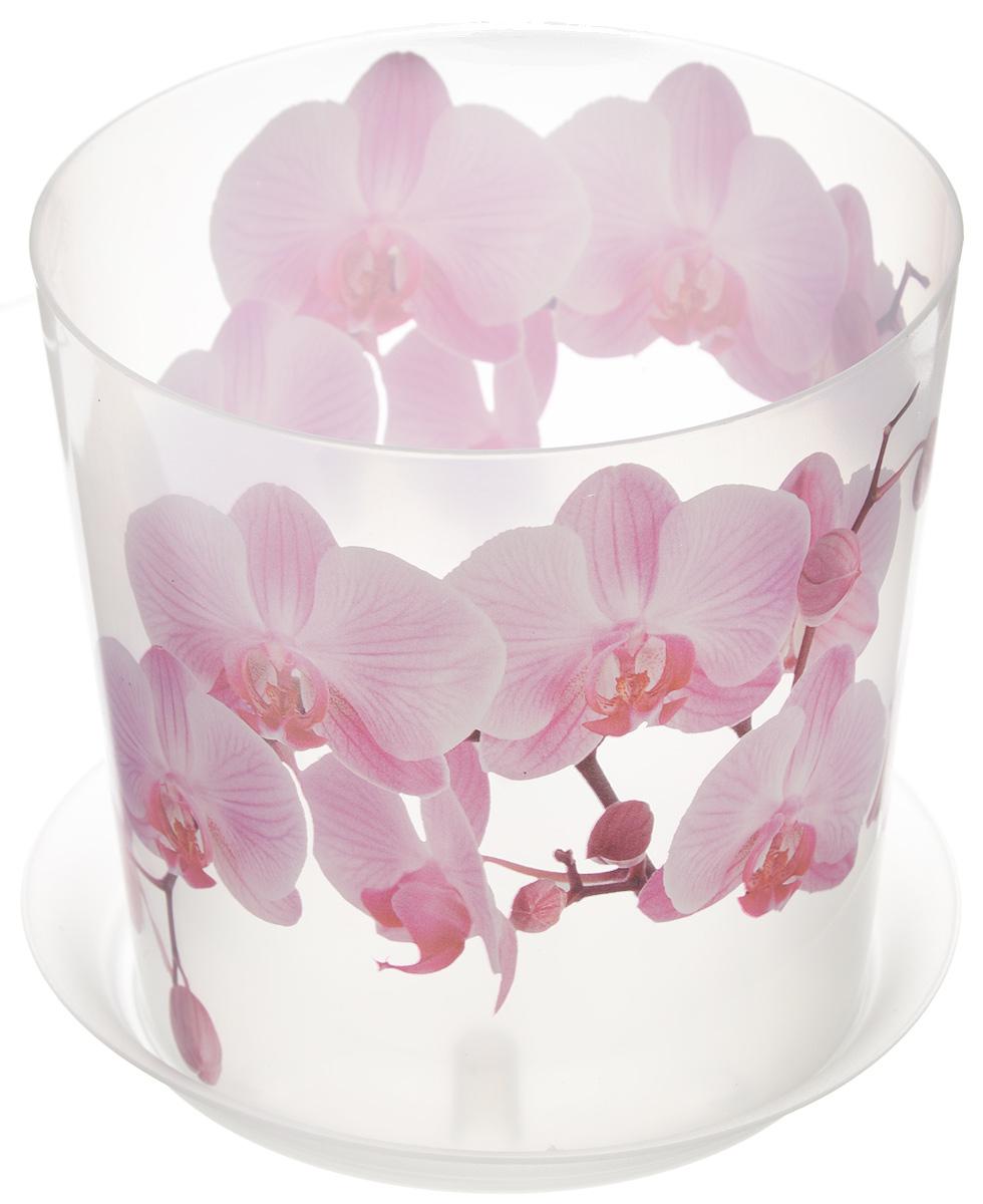 Кашпо Idea Деко, с подставкой, цвет: прозрачный, розовый, 1,2 лМ 3105Любой, даже самый современный и продуманный интерьер будет не завершенным без растений. Они не только очищают воздух и насыщают его кислородом, но и заметно украшают окружающее пространство. Такому полезному члену семьи просто необходимо красивое и функциональное кашпо, оригинальный горшок или необычная ваза! Мы предлагаем - Кашпо с подставкой 1,2 л ДЕКО. Орхидея! Оптимальный выбор материала - это пластмасса! Почему мы так считаем? Малый вес. С легкостью переносите горшки и кашпо с места на место, ставьте их на столики или полки, подвешивайте под потолок, не беспокоясь о нагрузке. Простота ухода. Пластиковые изделия не нуждаются в специальных условиях хранения. Их легко чистить достаточно просто сполоснуть теплой водой. Никаких царапин. Пластиковые кашпо не царапают и не загрязняют поверхности, на которых стоят. Пластик дольше хранит влагу, а значит растение реже нуждается в поливе. Пластмасса не пропускает воздух корневой системе растения не грозят резкие перепады температур. Огромный выбор форм, декора и расцветок вы без труда подберете что-то, что идеально впишется в уже существующий интерьер. Соблюдая нехитрые правила ухода, вы можете заметно продлить срок службы горшков, вазонов и кашпо из пластика: всегда учитывайте размер кроны и корневой системы растения (при разрастании большое растение способно повредить маленький горшок) берегите изделие от воздействия прямых солнечных лучей, чтобы кашпо и горшки не выцветали держите кашпо и горшки из пластика подальше от нагрева... Рекомендуем!