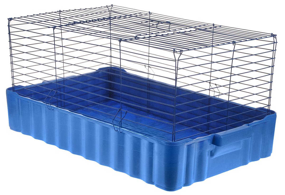 Клетка для кроликов ЗооМарк, цвет: синий поддон, синяя решетка, 75 х 46 х 40 см клетка для шиншилл и хорьков зоомарк цвет синий поддон синяя решетка 59 х 41 х 79 см 725дк