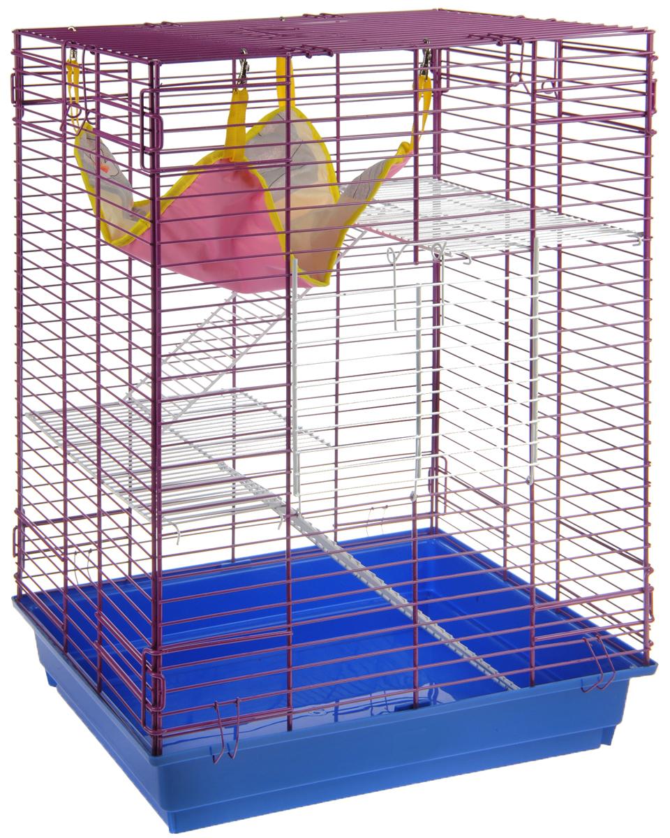 Клетка для шиншилл и хорьков ЗооМарк, цвет: синий поддон, ярко-фиолетовая решетка, 59 х 41 х 79 см. 725жк клетка для шиншилл и хорьков зоомарк цвет синий поддон синяя решетка 59 х 41 х 79 см 725дк