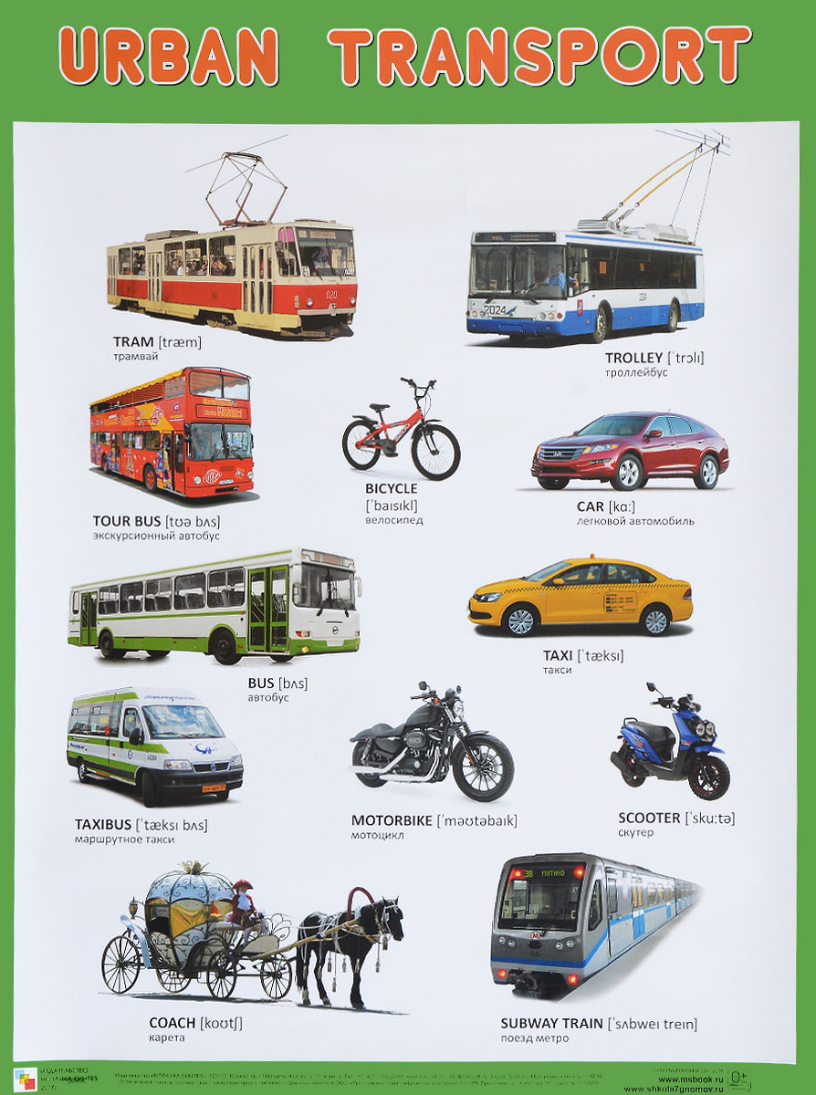 Urban Transport / Городской транспорт. Плакат цена