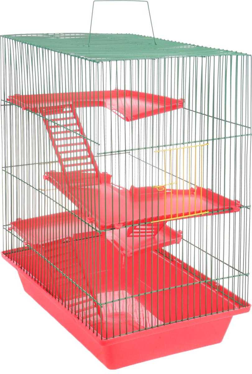 Клетка для грызунов ЗооМарк Гризли, 4-этажная, цвет: красный поддон, зеленая решетка, красные этажи, 41 х 30 х 50 см240КЗКлетка ЗооМарк Гризли, выполненная из полипропилена и металла, подходит для мелких грызунов. Изделие четырехэтажное. Клетка имеет яркий поддон, удобна в использовании и легко чистится. Сверху имеется ручка для переноски. Такая клетка станет уединенным личным пространством и уютным домиком для маленького грызуна. Рекомендуем!