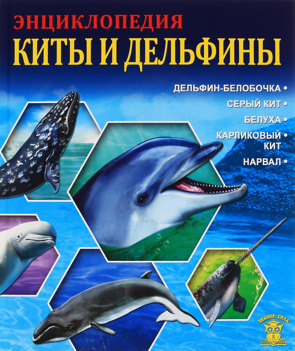 Леся Калугина Киты и дельфины паркер с киты и дельфины
