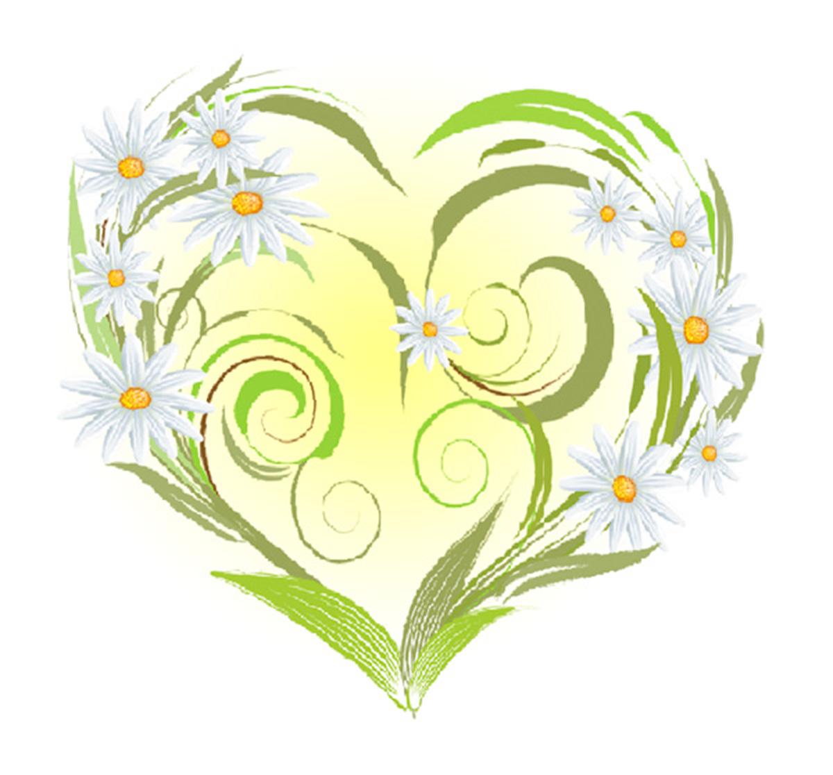 микрорайон идеально картинки цветка семьи ведущую, ведь