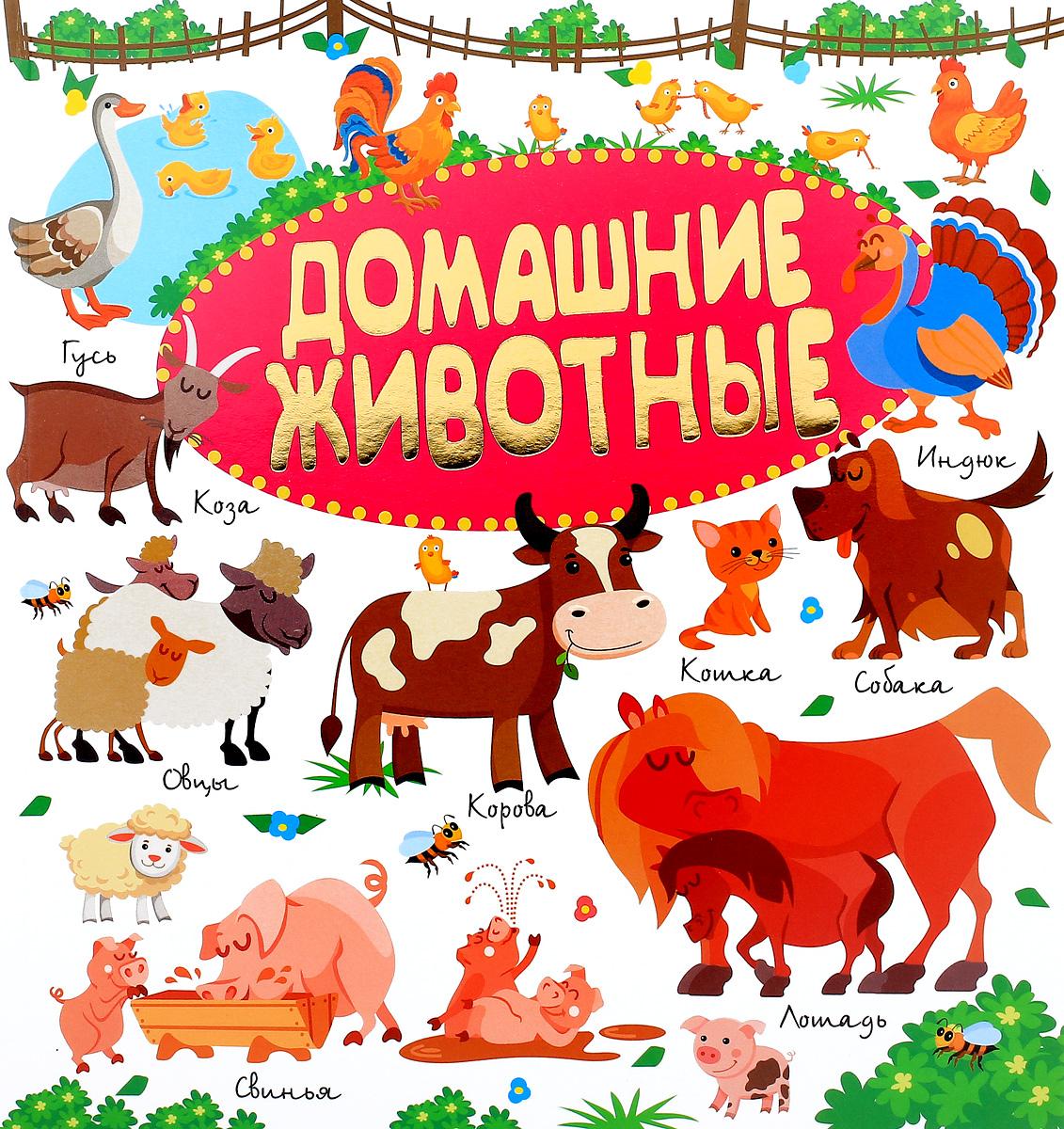 Л. В. Доманская, И. М. Попова Домашние животные