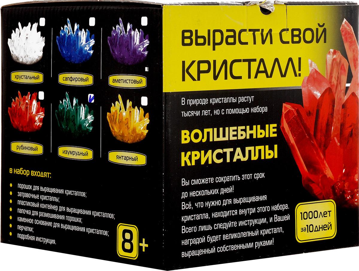 Набор для исследований Master IQ2 Волшебные кристаллы цвет изумрудный 0077_изумрудный, 007Набор для исследований Каррас Волшебные кристаллы позволит вашему ребенку самостоятельно провести эксперимент по выращиванию цветного кристалла. В природе кристаллы растут тысячи лет, но с помощью этого набора срок роста сокращается до нескольких дней. Набор включает в себя все необходимые элементы: порошок для выращивания кристалла, затравочные кристаллы, пластиковый контейнер, ложечку для размешивания порошка, каменное основание для кристалла, перчатки и подробную инструкцию на русском языке.Кристалл - это твердое тело, молекулы в котором располагаются в виде повторяющихся фигур правильной формы. Размер контейнера: 16 см x 16 см x 15 см.