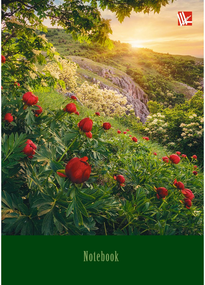 Канц-Эксмо Записная книжка Пейзаж Утро в горах 80 листов в клетку