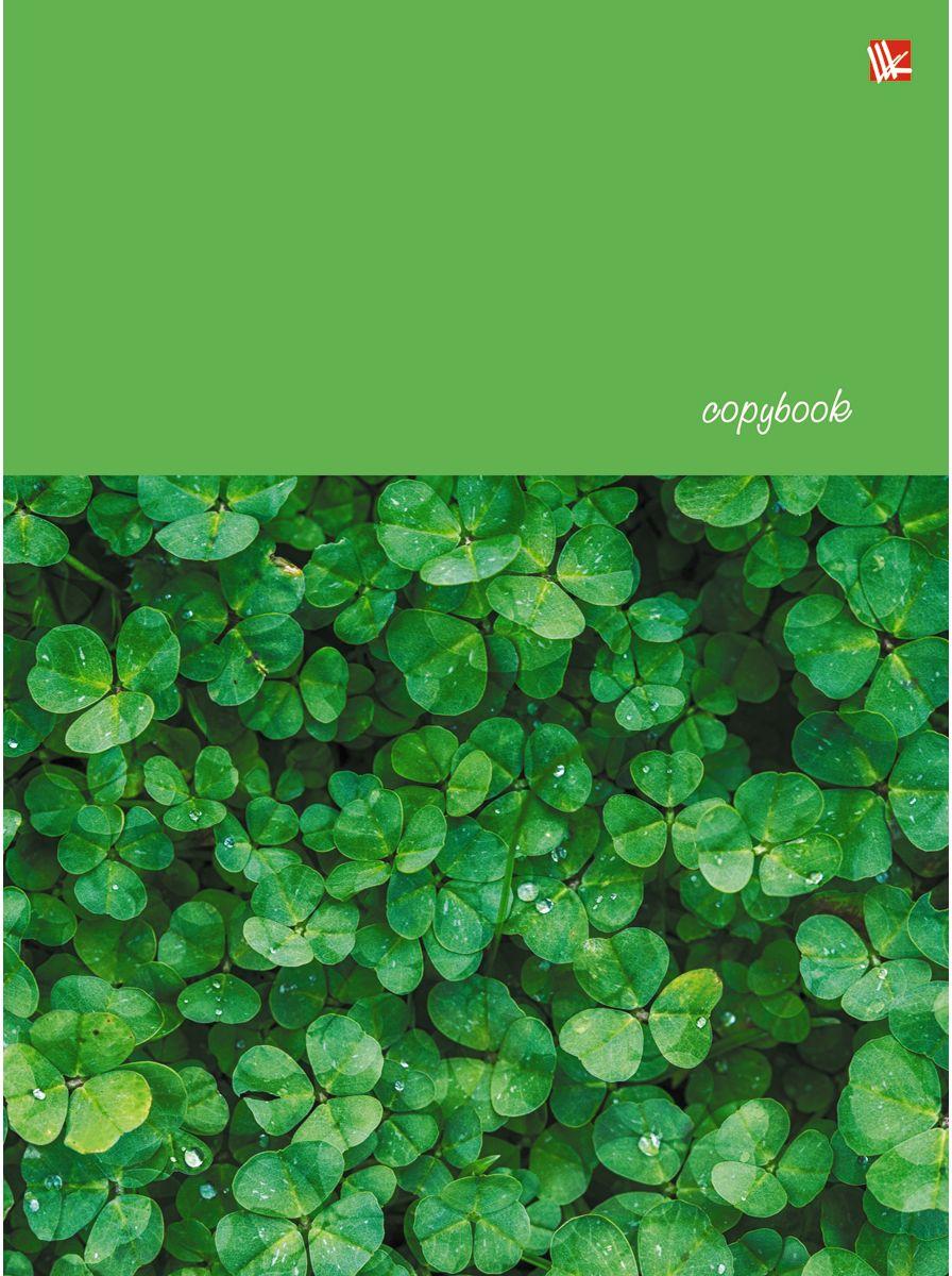 Канц-Эксмо Тетрадь Счастливый клевер 100 листов в клетку канц эксмо тетрадь гармония цвета 96 листов в клетку