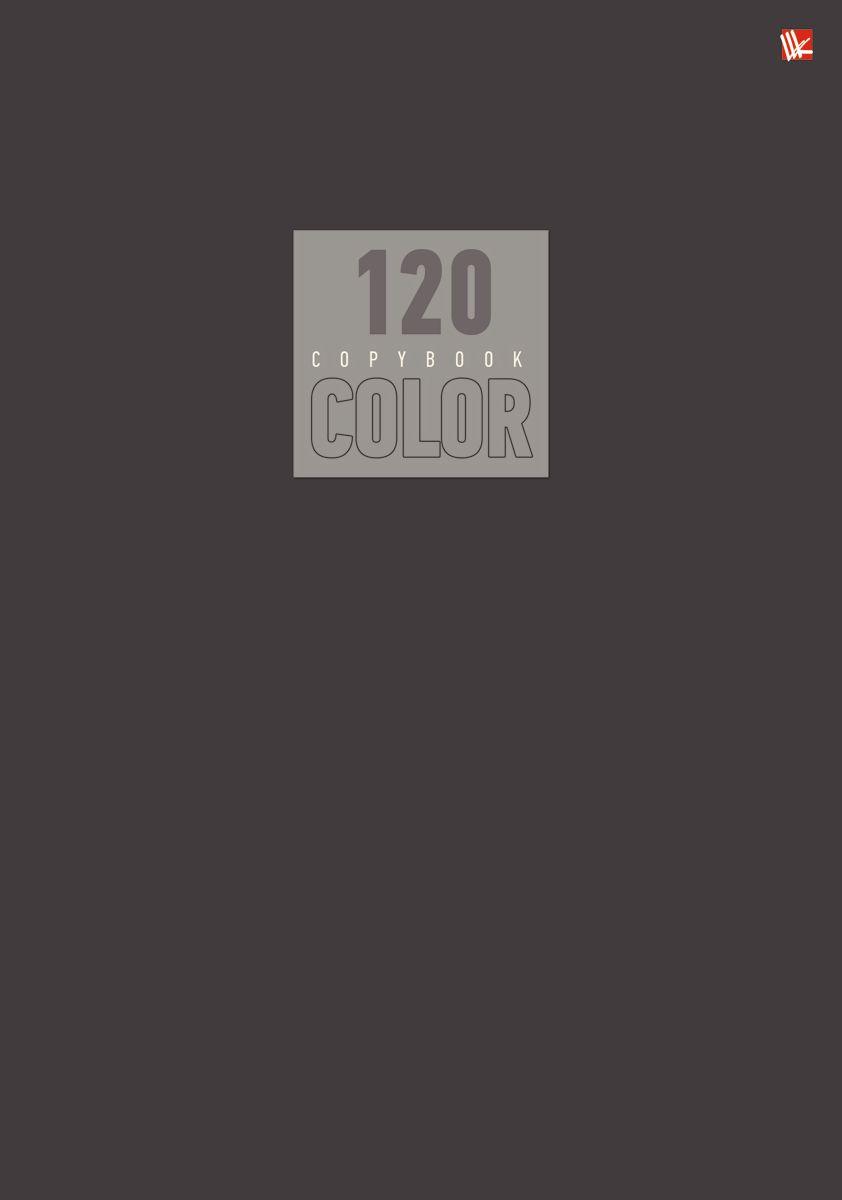 Канц-Эксмо Тетрадь Стиль и цвет 120 листов в клетку цвет серый канц эксмо тетрадь голубая 120 листов в клетку тпр612036