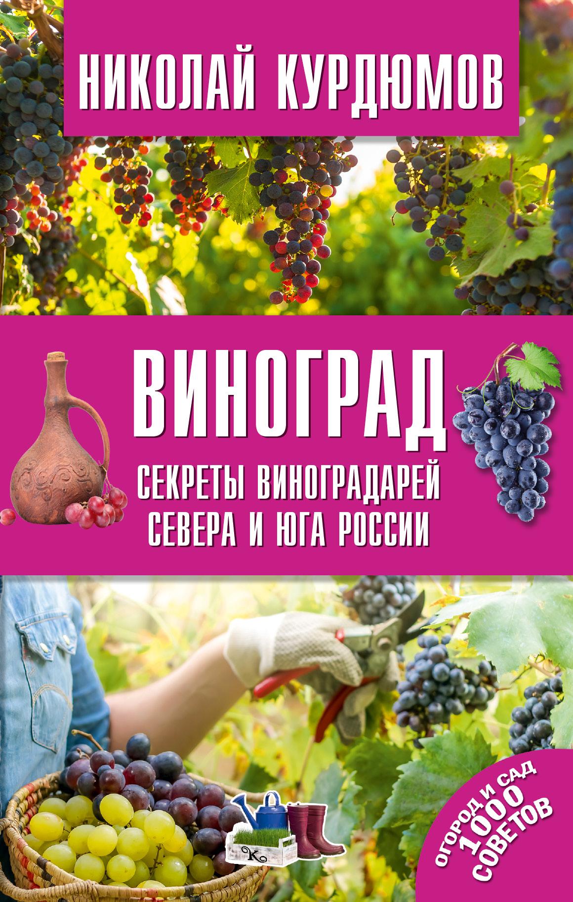 Курдюмов Николай Иванович Виноград. Секреты виноградарей севера и юга России