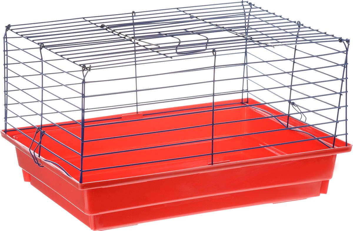 Клетка для кролика ЗооМарк, цвет: красный поддон, синяя решетка, 50 х 35 х 30 см клетка для шиншилл и хорьков зоомарк цвет синий поддон синяя решетка 59 х 41 х 79 см 725дк