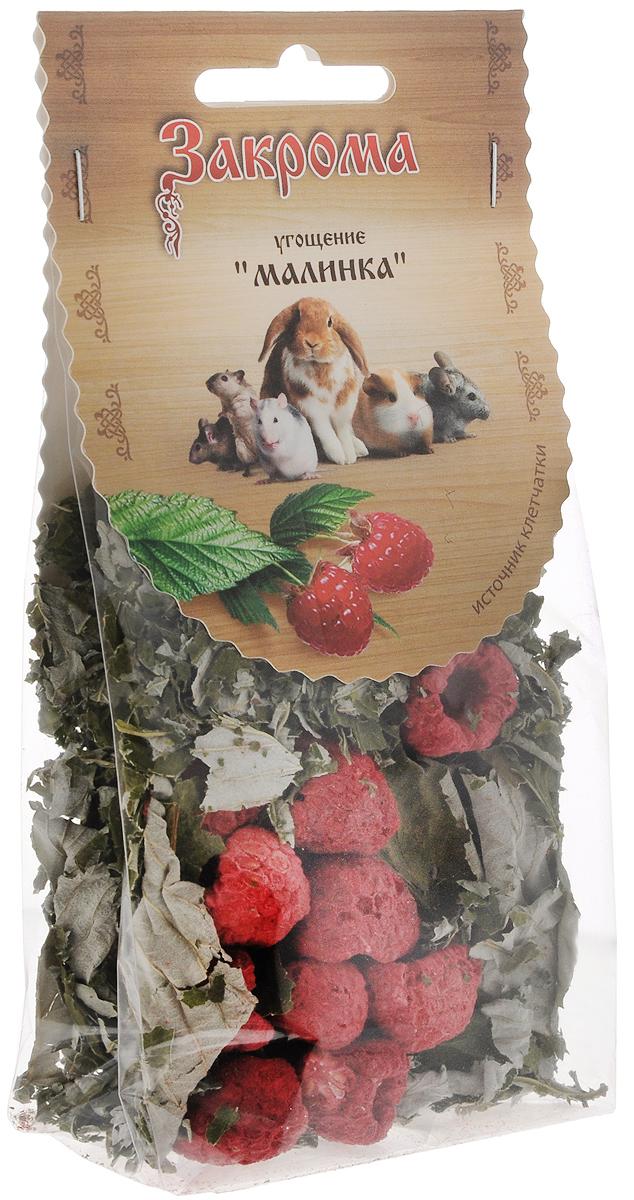 Лакомство для грызунов Закрома Малинка, 15 г лакомство для грызунов закрома веточки яблони и березы 100 г