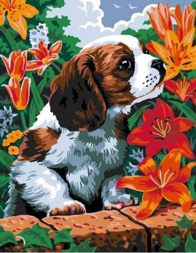 Набор для рисования по номерам Цветной Щенок и лилии, 30 x 40 см набор для рисования по номерам цветной венецианский мостик 40 x 50 см